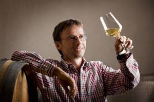 Pleased vintner looking at glass of white wine in cellar.