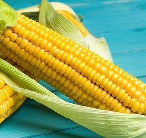 Ist Mais glutenfrei?